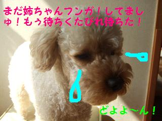 2007_03040012.jpg