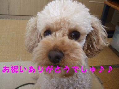 2007_03140006.jpg