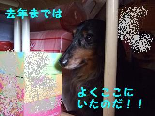 2007_04180023.jpg