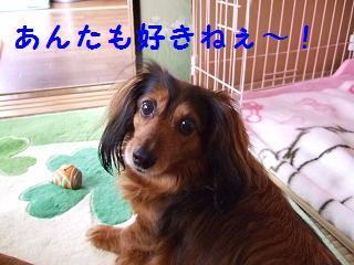 2007_04240002.jpg