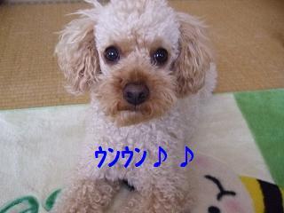 2007_04240003.jpg