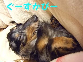 2007_05020018.jpg