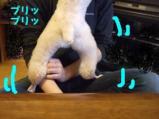 2007_05170025.jpg