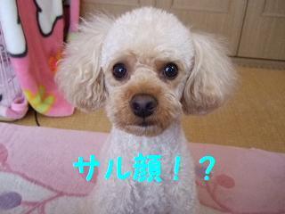 2007_05210001.jpg