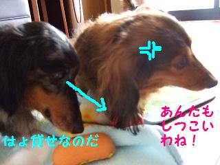 2007_06.jpg