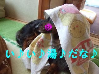DSCF1676.jpg