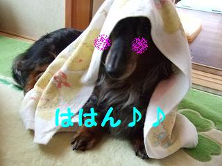 DSCF1678.jpg