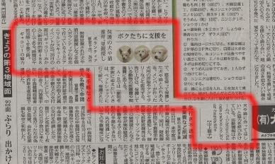 毎日新聞掲載記事 2008.10.23
