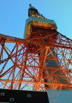 夕方:東京タワー♪