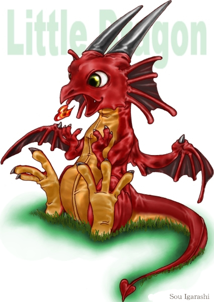 little-dragon.jpg