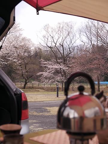 春の那須21.jpg