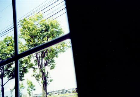 apd80.jpg