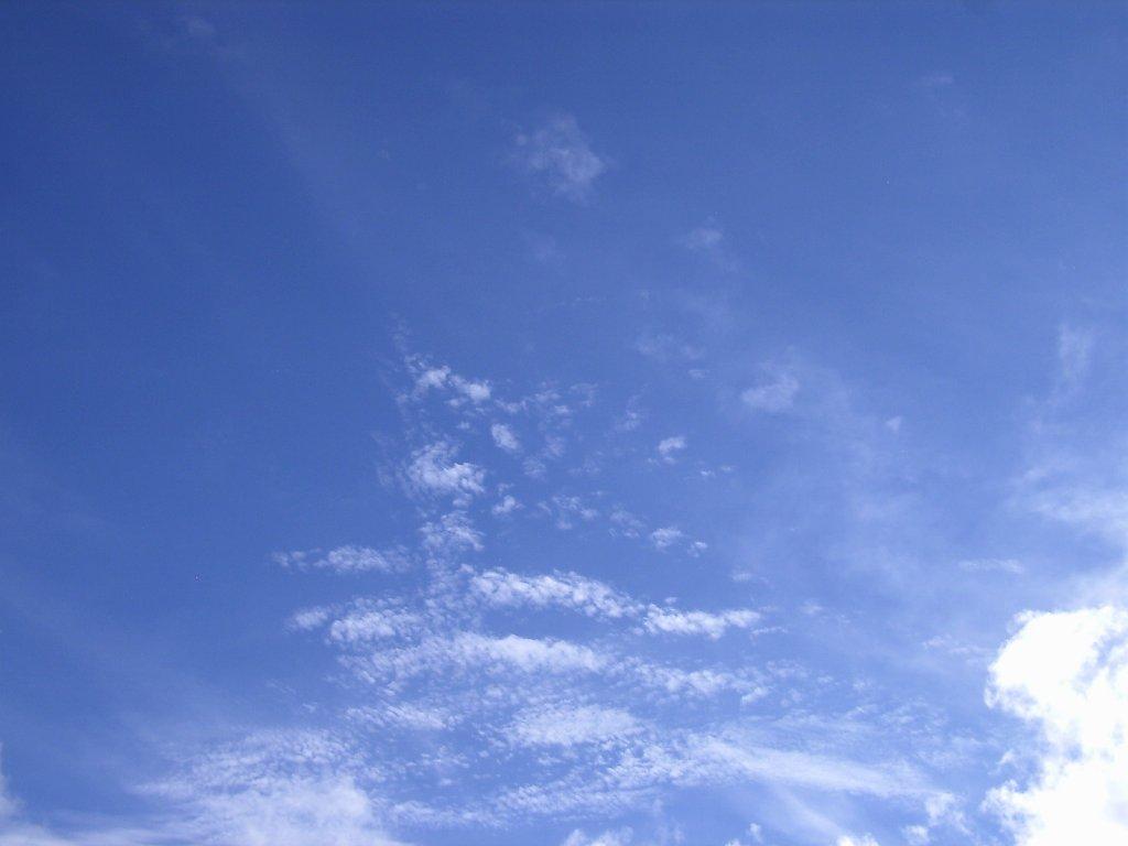 SkyDay110.jpg