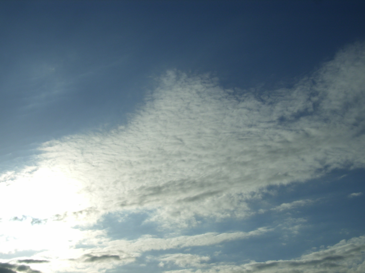 SkyDay113.jpg