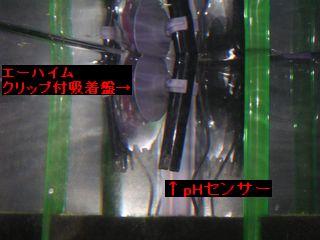 20051125_001