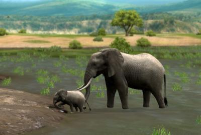 ゾウの親子2