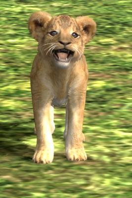 赤ちゃんライオン2
