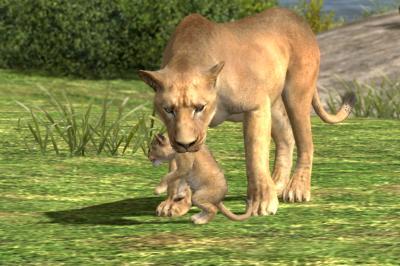 赤ちゃんライオン3
