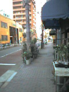 20051206133557