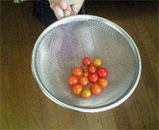 syoeiトマト