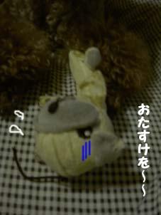 kayano0620d