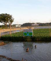 20070917_6.jpg