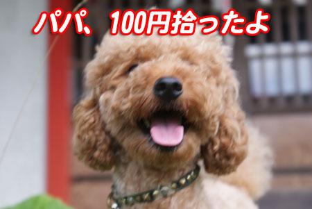 20091003-6.jpg