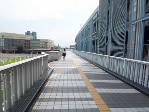 hamaootsu01