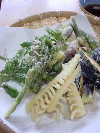 山菜 天ぷら