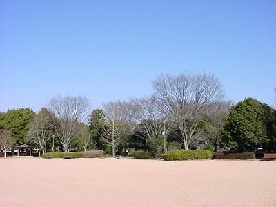 運動公園Feb3