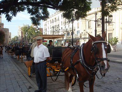 Sevilla 馬車のおじさん