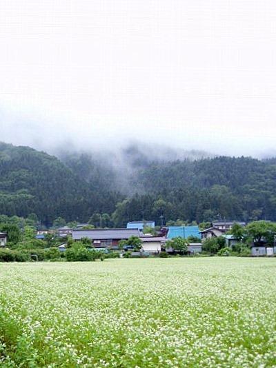 荒川村と蕎麦畑