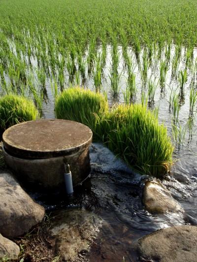 田圃に水をひく
