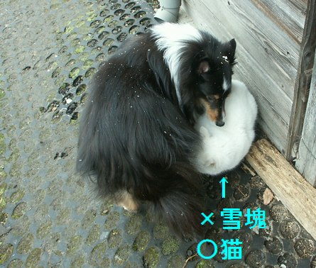 10jun02006.jpg