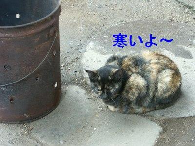 10jun02008.jpg