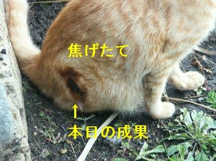 10jun02075.jpg