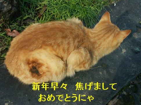 10jun02083.jpg