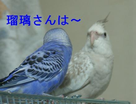 10jun11002.jpg