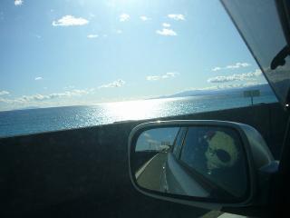 海を眺めるおばぶ