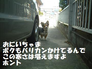 DSCF0100'