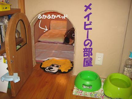 メイビーお届け紀行 2008 2 10、11 007'
