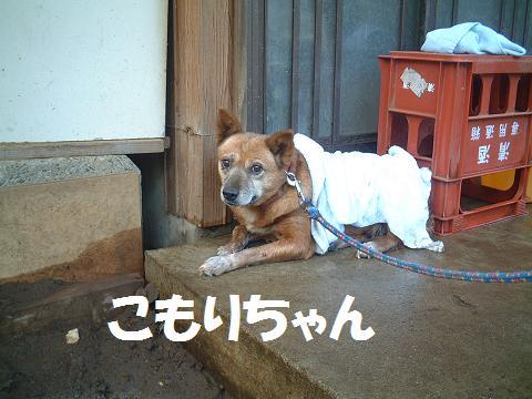間宮 H20.8.3.14'