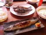 20070813釜石の魚