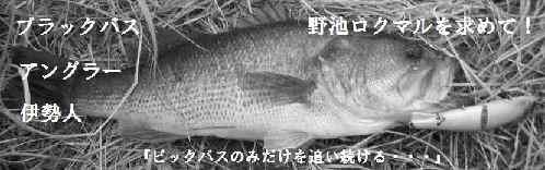 バス釣り・伊勢・玉城