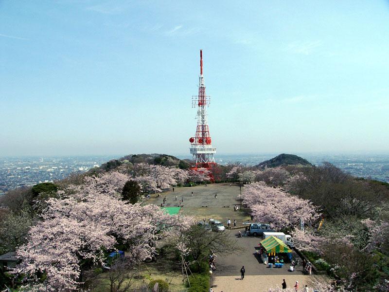 BCLと写真が好きなおじさんの日記   : 湘南平の桜と富士山
