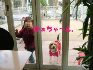 コピー ~ DSCF5067
