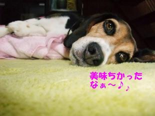 コピー ~ DSCF0430