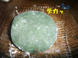 コピー ~ DSCF0860