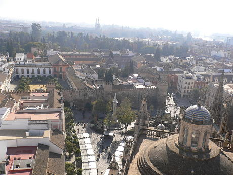 catedral016