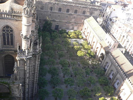 catedral017